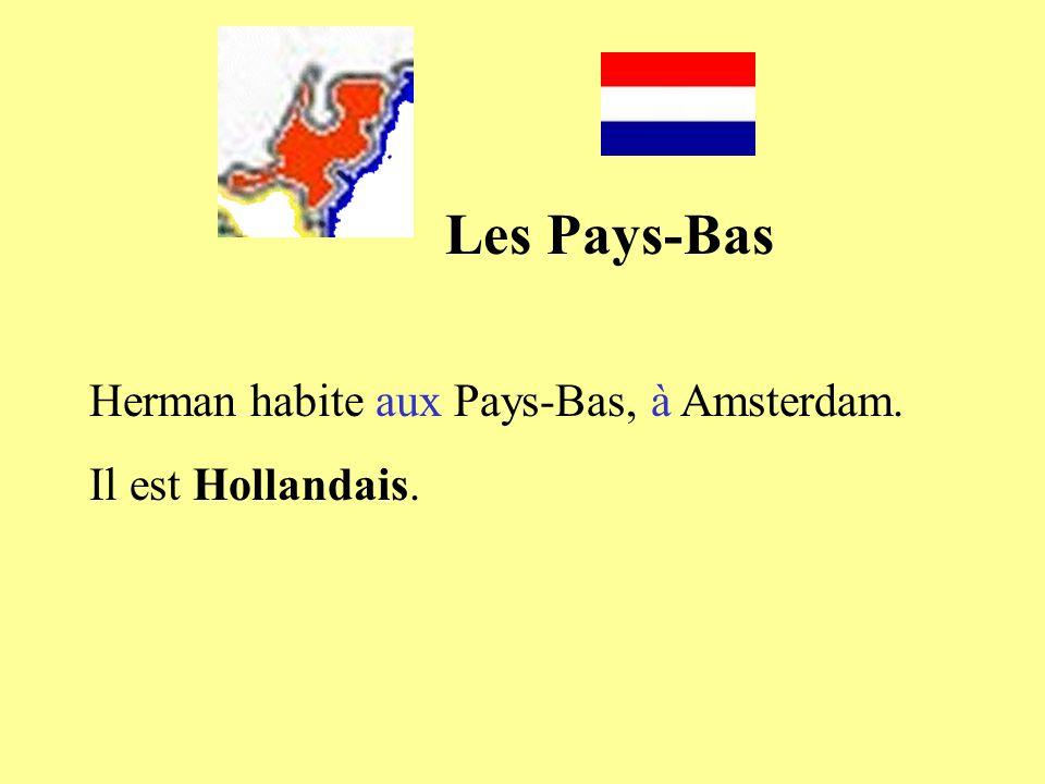 Les Pays-Bas Herman habite aux Pays-Bas, à Amsterdam. Il est Hollandais.