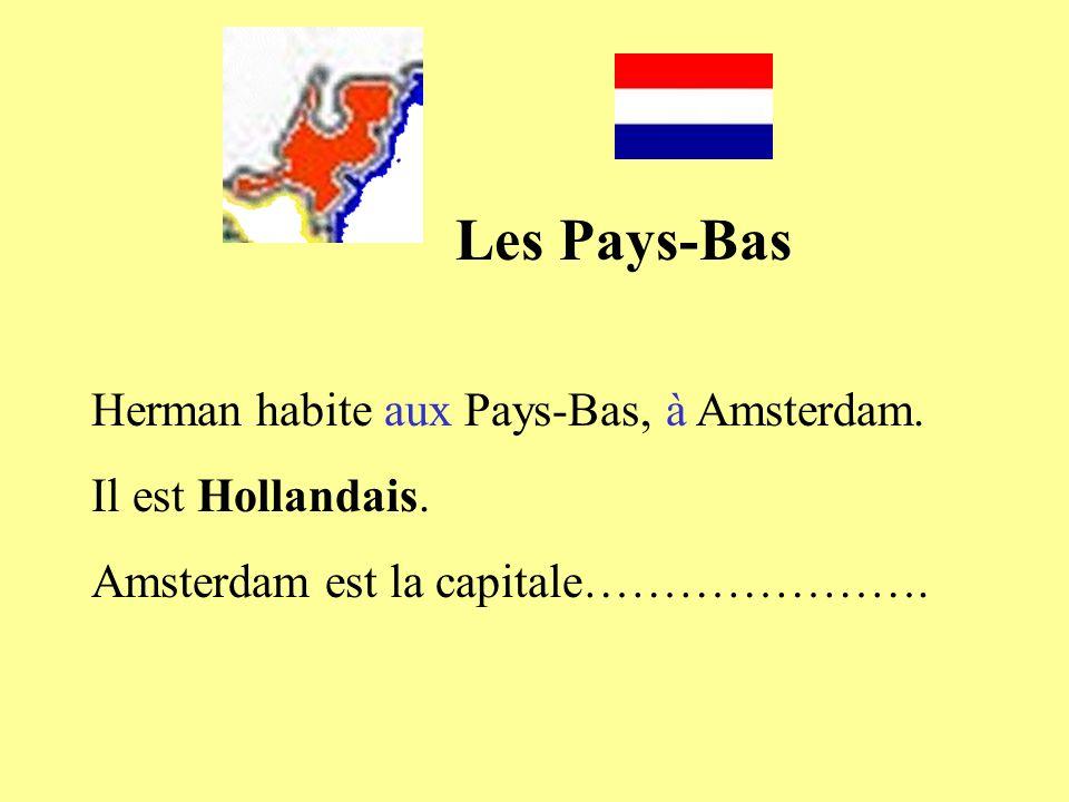 Les Pays-Bas Herman habite aux Pays-Bas, à Amsterdam. Il est Hollandais. Amsterdam est la capitale………………….
