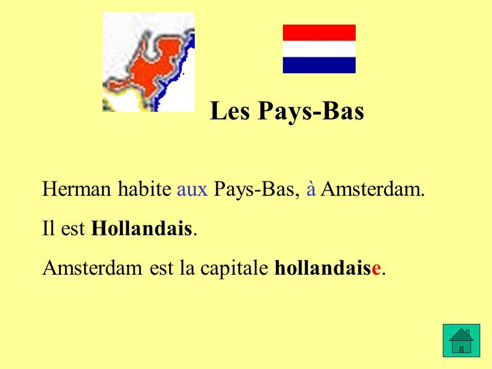 Les Pays-Bas Herman habite aux Pays-Bas, à Amsterdam. Il est Hollandais. Amsterdam est la capitale hollandaise.