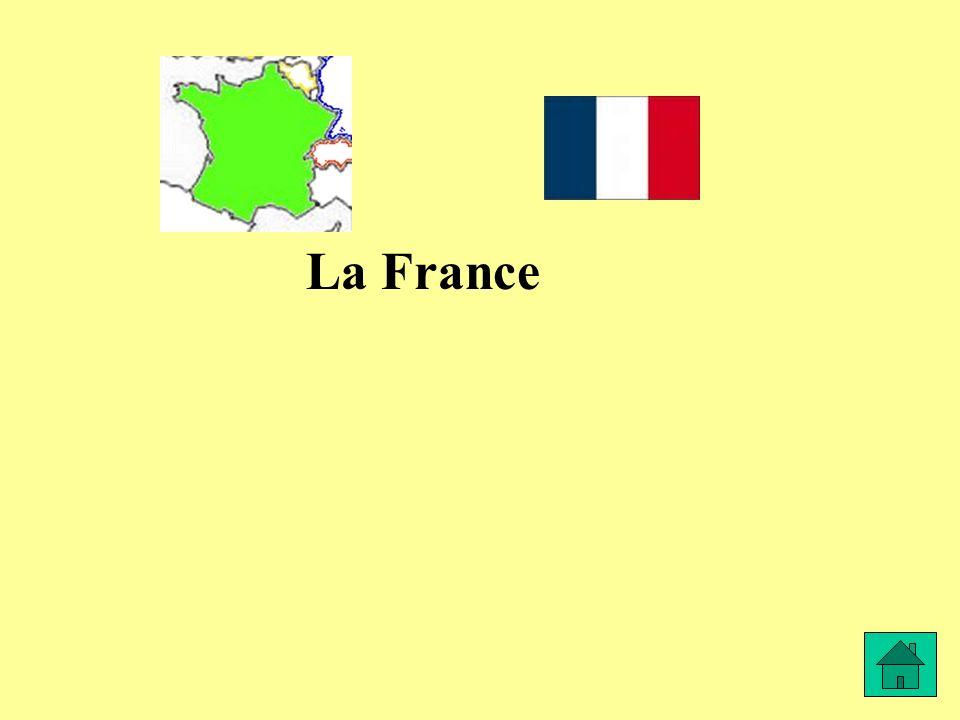David habite en France, à Paris. Il est …………….