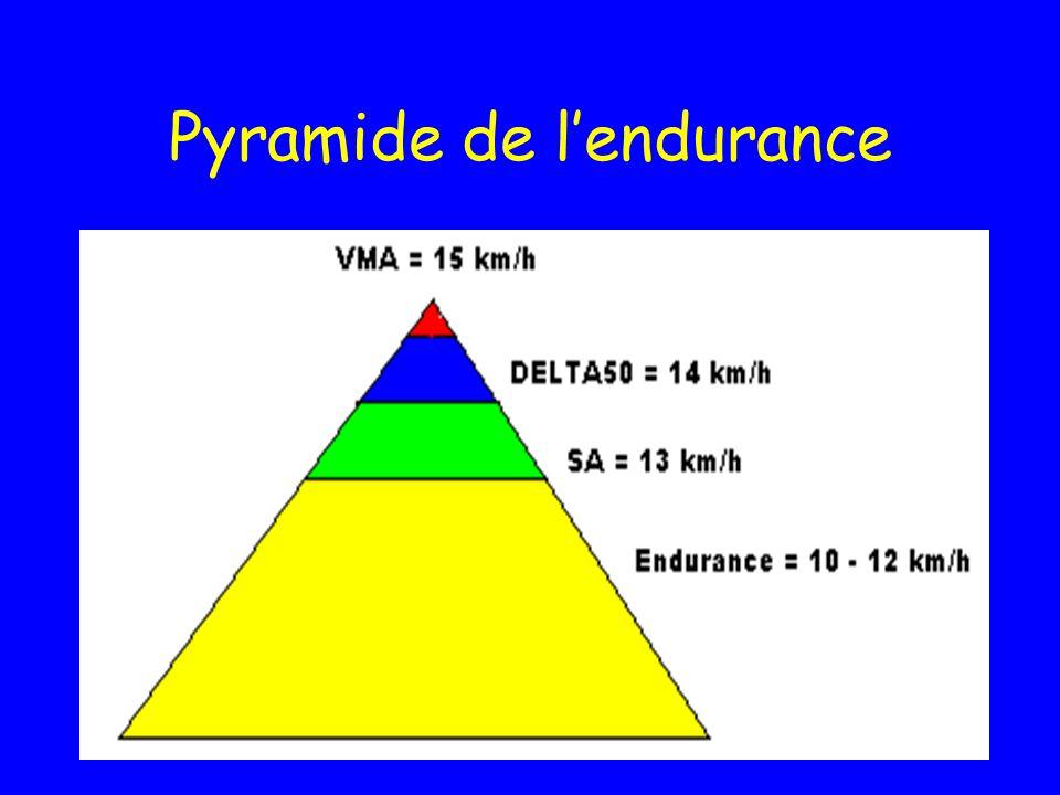 Pyramide de lendurance