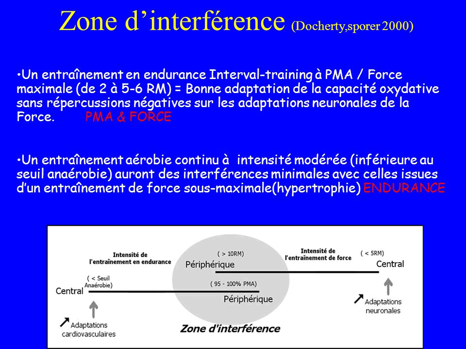 Zone dinterférence (Docherty,sporer 2000) Un entraînement en endurance Interval-training à PMA / Force maximale (de 2 à 5-6 RM) = Bonne adaptation de