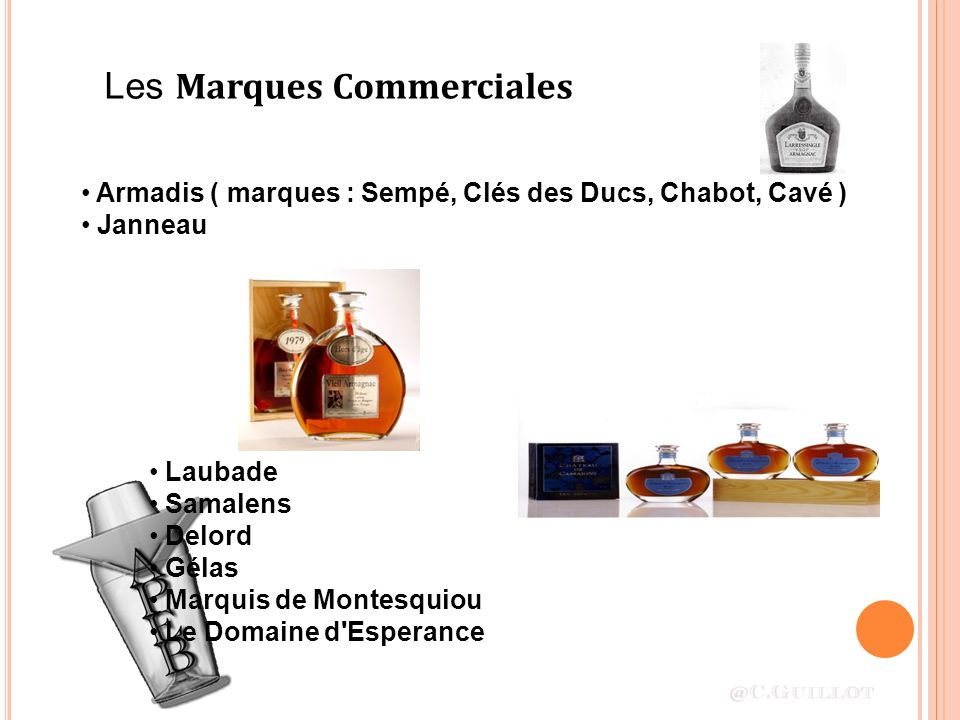 Les Marques Commerciales Armadis ( marques : Sempé, Clés des Ducs, Chabot, Cavé ) Janneau Laubade Samalens Delord Gélas Marquis de Montesquiou Le Domaine d Esperance
