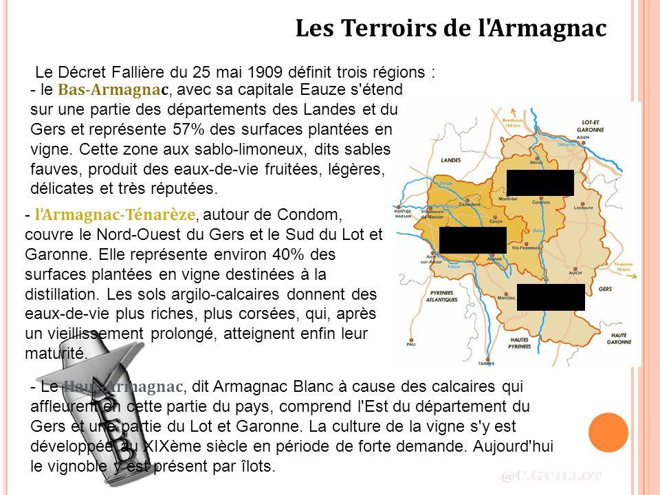 Les Terroirs de l'Armagnac - Le Haut-Armagnac, dit Armagnac Blanc à cause des calcaires qui affleurent en cette partie du pays, comprend l'Est du dépa