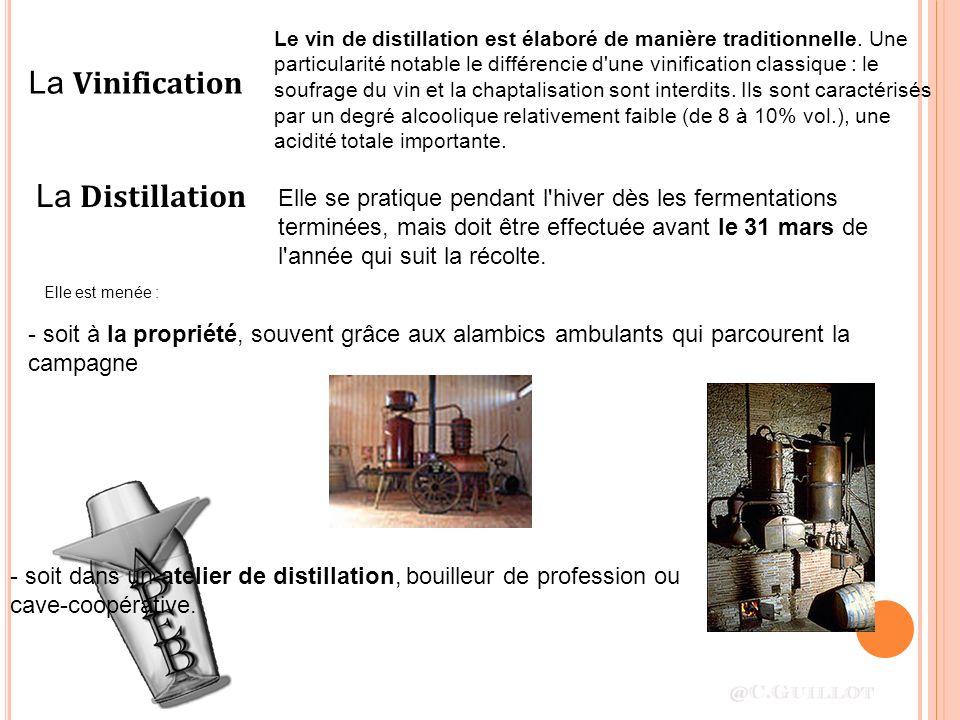 La Vinification Le vin de distillation est élaboré de manière traditionnelle. Une particularité notable le différencie d'une vinification classique :