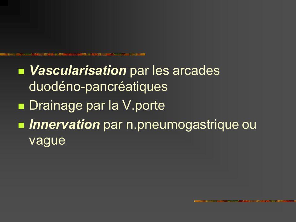 Vascularisation par les arcades duodéno-pancréatiques Drainage par la V.porte Innervation par n.pneumogastrique ou vague