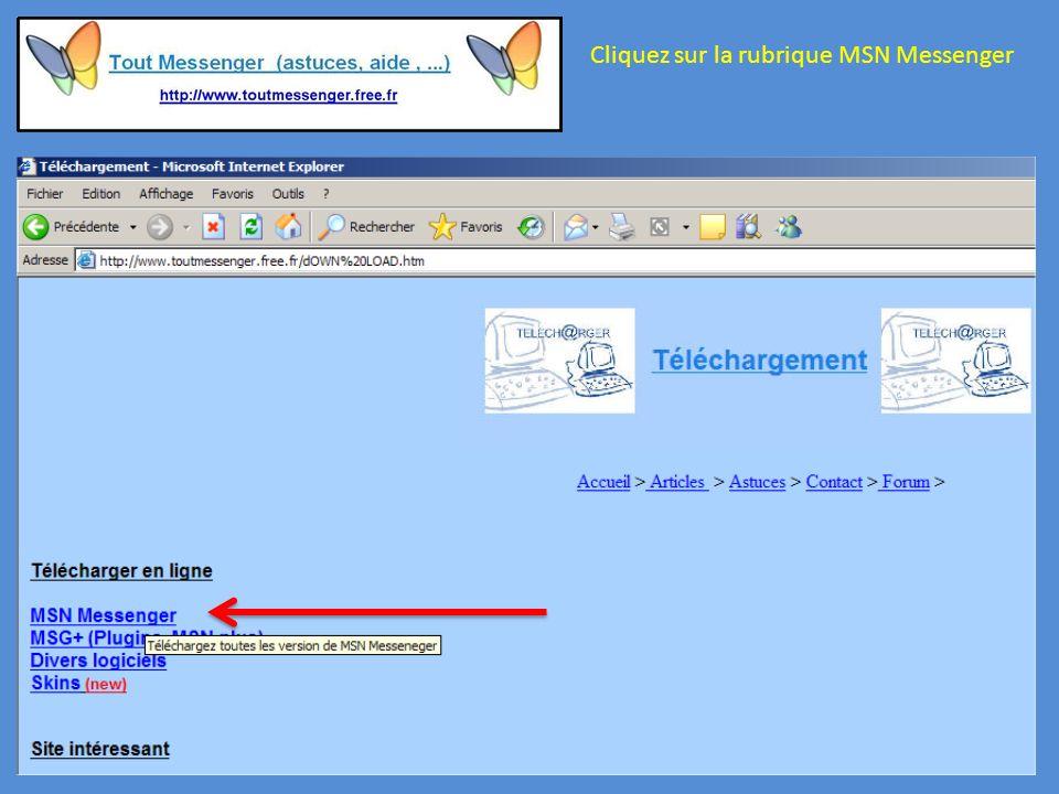 Cliquez sur la rubrique MSN Messenger