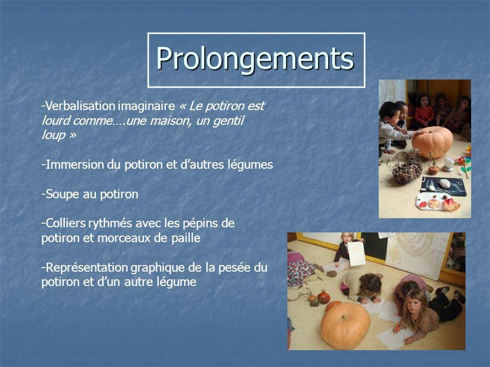 Prolongements Prolongements -Verbalisation imaginaire « Le potiron est lourd comme….une maison, un gentil loup » -Immersion du potiron et dautres légu