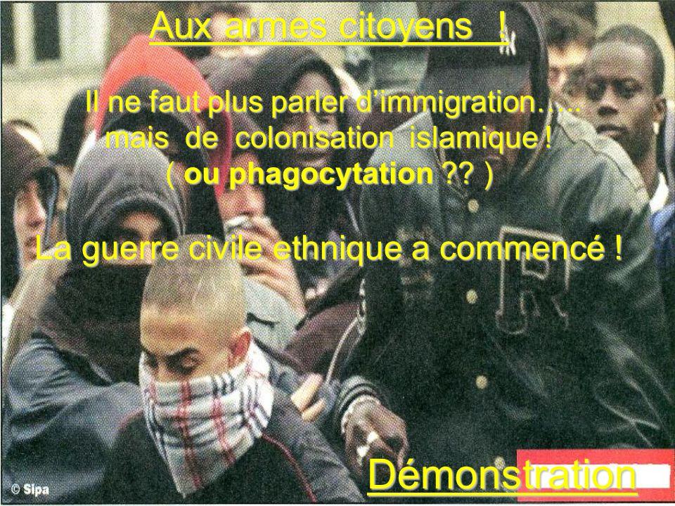 Aux armes citoyens ! Il ne faut plus parler dimmigration….. mais de colonisation islamique ! ( ou phagocytation ?? ) La guerre civile ethnique a comme