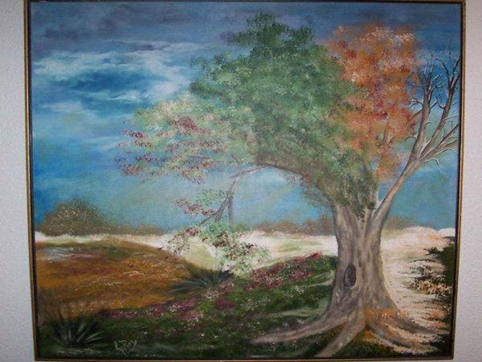 Ses branches représentent les 4 saisons il indique aussi notre état, nous pouvons être en été, mais notre corps, Sois par la maladie ou les épreuves,