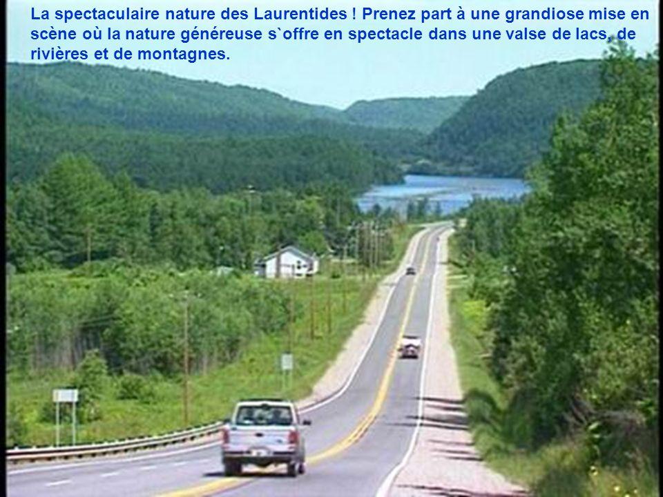 La spectaculaire nature des Laurentides .