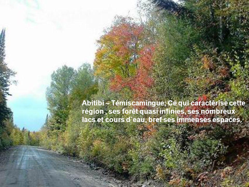 Abitibi – Témiscamingue; Ce qui caractérise cette région, ses forêt quasi infinies, ses nombreux lacs et cours d`eau, bref ses immenses espaces.