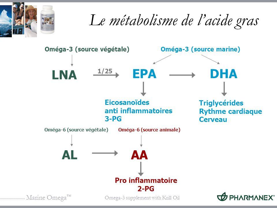 Marine Omega Omega-3 supplement with Krill Oil Le métabolisme de lacide gras Pro inflammatoire 2-PG LNA Oméga-3 (source végétale) Eicosanoïdes anti in