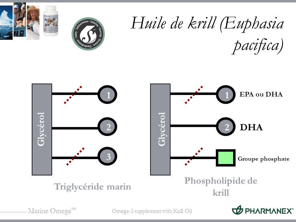 Marine Omega Omega-3 supplement with Krill Oil 1 2 3 DHA Triglycéride marin Phospholipide de krill Groupe phosphate Glycérol 1 2 EPA ou DHA Huile de k