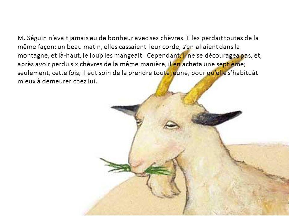 M.Séguin navait jamais eu de bonheur avec ses chèvres.