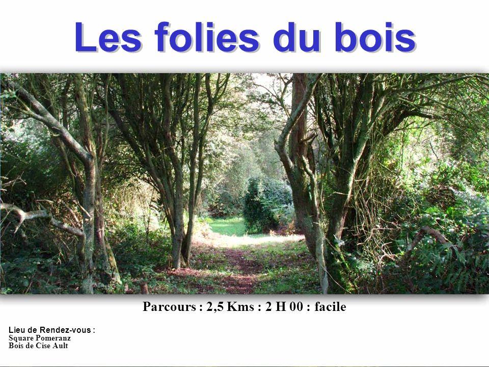 Les folies du bois Les folies du bois Lieu de Rendez-vous : Square Pomeranz Bois de Cise Ault Parcours : 2,5 Kms : 2 H 00 : facile