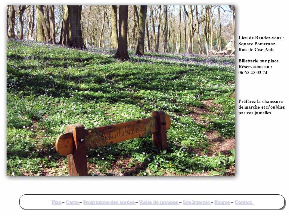 Lieu de Rendez-vous : Square Pomeranz Bois de Cise Ault Billetterie sur place.