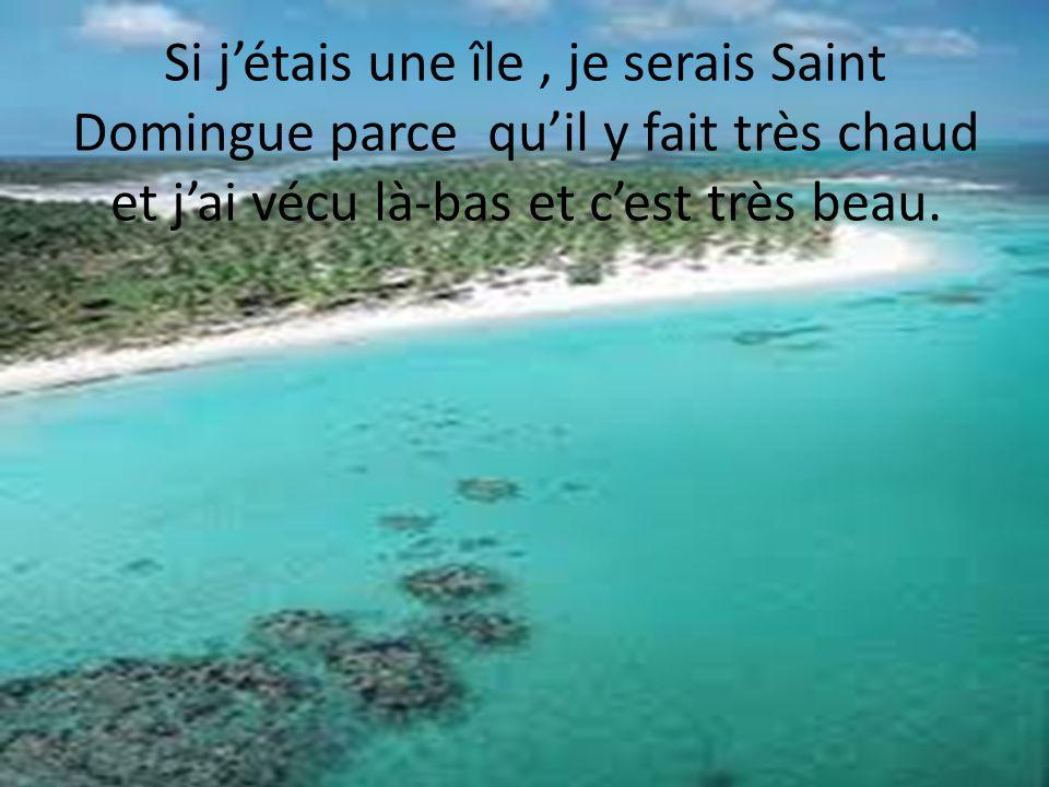 Si jétais une île, je serais Saint Domingue parce quil y fait très chaud et jai vécu là-bas et cest très beau.