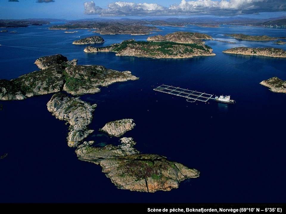 Scène de pêche, Boknafjorden, Norvège (59°10 N – 5°35 E)