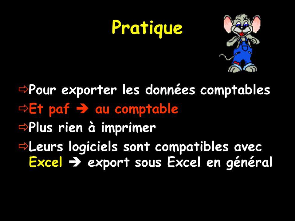 Pratique Pour exporter les données comptables Et paf au comptable Plus rien à imprimer Leurs logiciels sont compatibles avec Excel export sous Excel e
