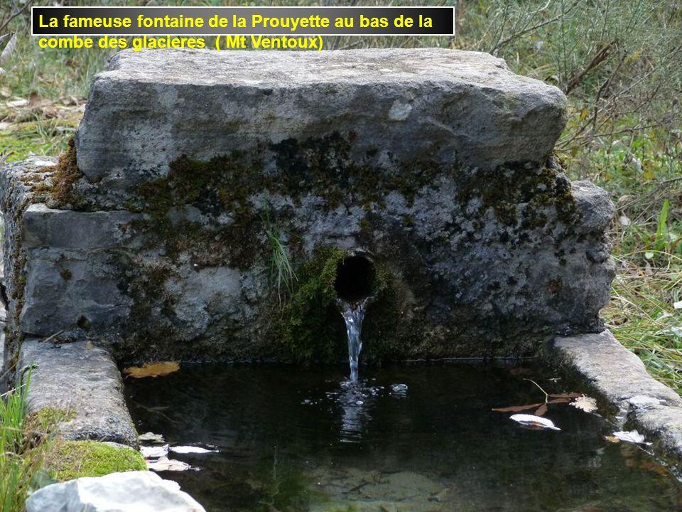 A Ste Euphémie sur Ouvéze un barrage construit par des castors