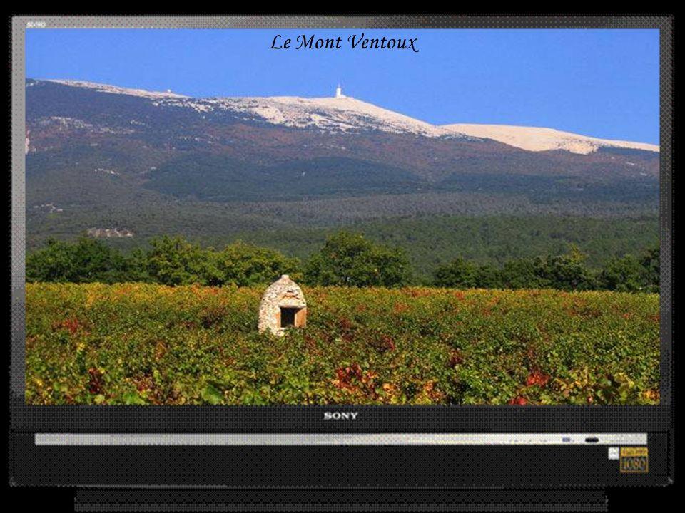 Bedoin en bas du Mont Ventoux