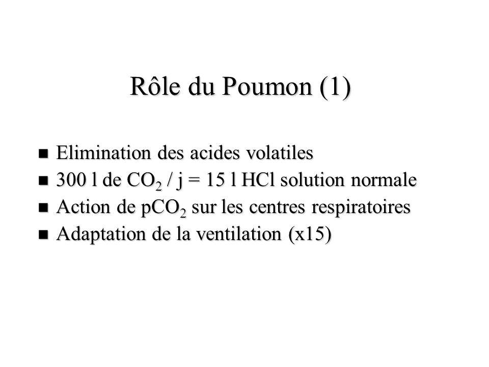 Rôle du Poumon (1) n Elimination des acides volatiles n 300 l de CO 2 / j = 15 l HCl solution normale n Action de pCO 2 sur les centres respiratoires