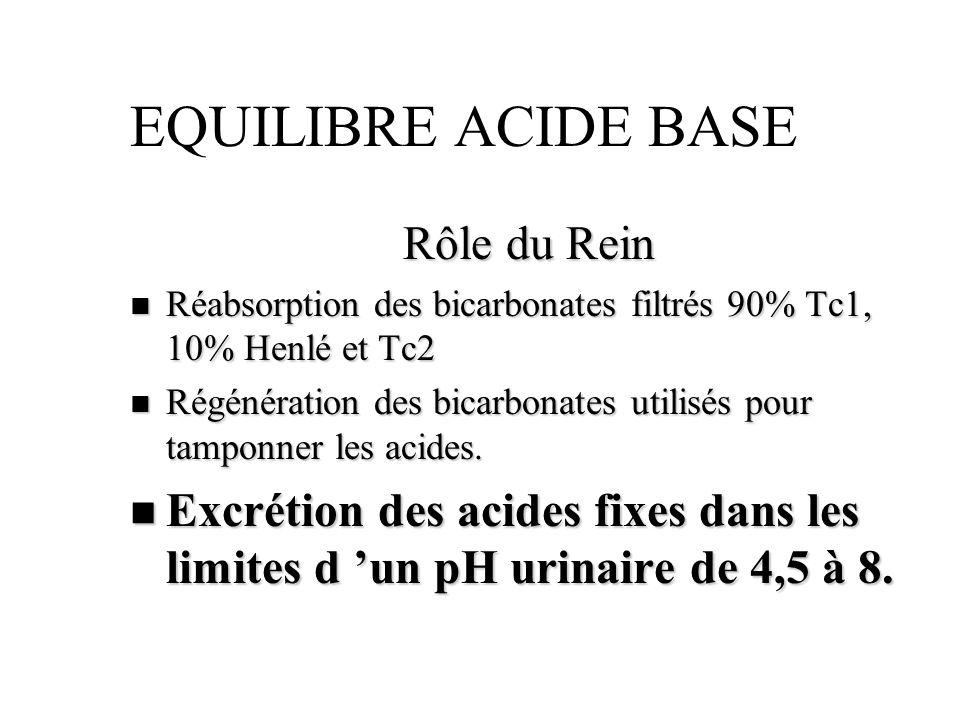 EQUILIBRE ACIDE BASE Rôle du Rein n Réabsorption des bicarbonates filtrés 90% Tc1, 10% Henlé et Tc2 n Régénération des bicarbonates utilisés pour tamp