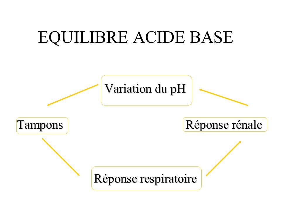 EQUILIBRE ACIDE BASE Variation du pH TamponsRéponse rénale Réponse respiratoire