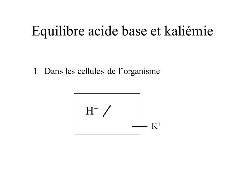 Equilibre acide base et kaliémie 1 Dans les cellules de lorganisme H+H+ K+K+