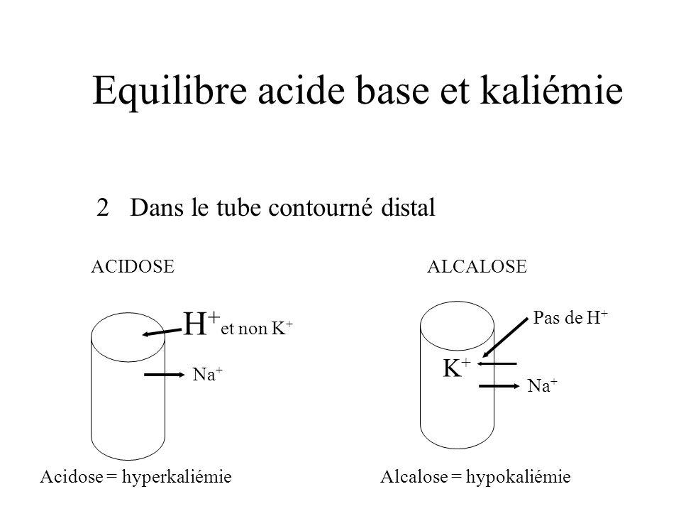 Equilibre acide base et kaliémie 2 Dans le tube contourné distal H + et non K + K+K+ ACIDOSE ALCALOSE Na + Acidose = hyperkaliémie Alcalose = hypokali