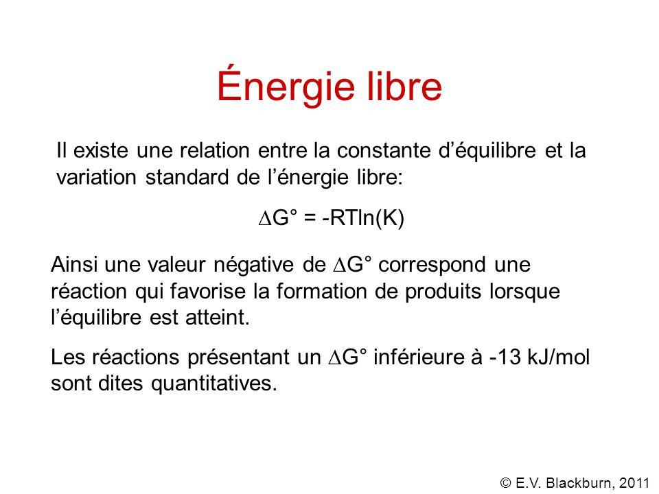 © E.V. Blackburn, 2011 Énergie libre Il existe une relation entre la constante déquilibre et la variation standard de lénergie libre: G° = -RTln(K) Ai