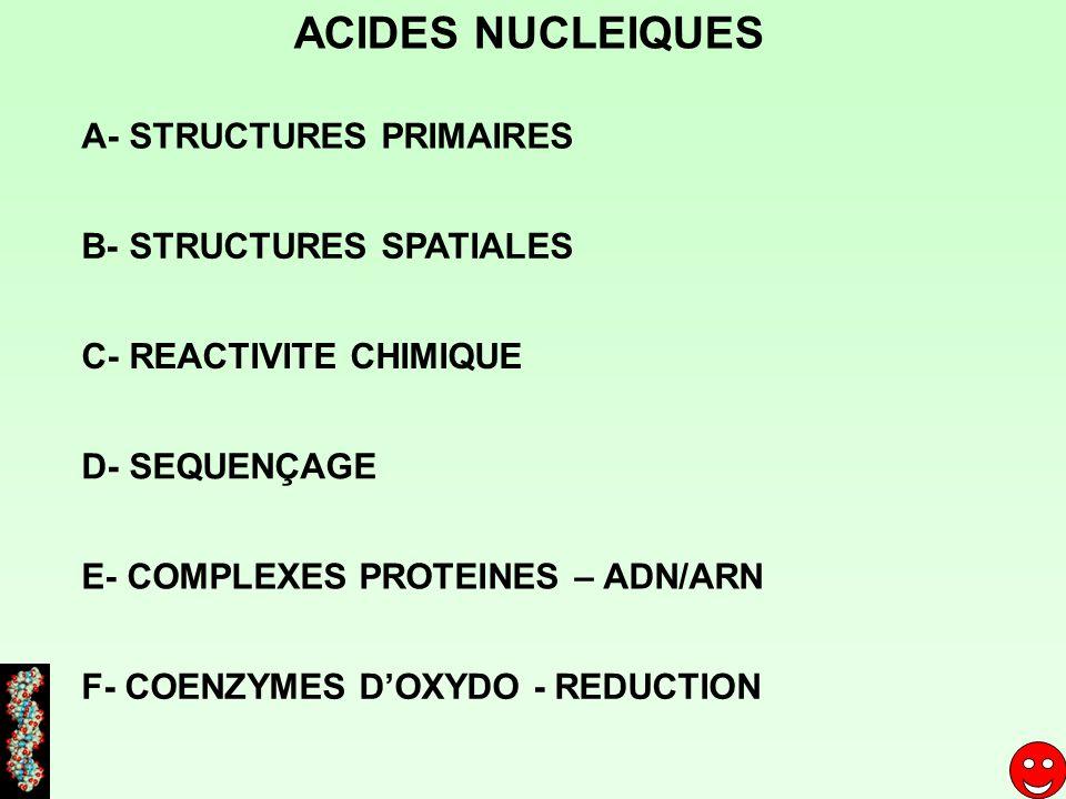 2 sortes de bases azotées hétérocycliques bases pyrimidiques (noyau pyrimidine) bases puriques (noyau purine) N N 1 2 3 4 5 6 N N N N 1 2 3 4 5 67 8 9 ACIDES NUCLEIQUES