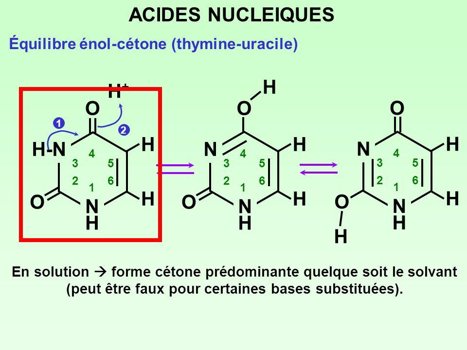 ACIDES NUCLEIQUES Équilibre énol-cétone (thymine-uracile) En solution forme cétone prédominante quelque soit le solvant (peut être faux pour certaines