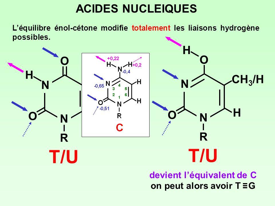 ACIDES NUCLEIQUES Léquilibre énol-cétone modifie totalement les liaisons hydrogène possibles. N NRNR O O CH 3 /H H H T/U N NRNR O O CH 3 /H H T/U H de
