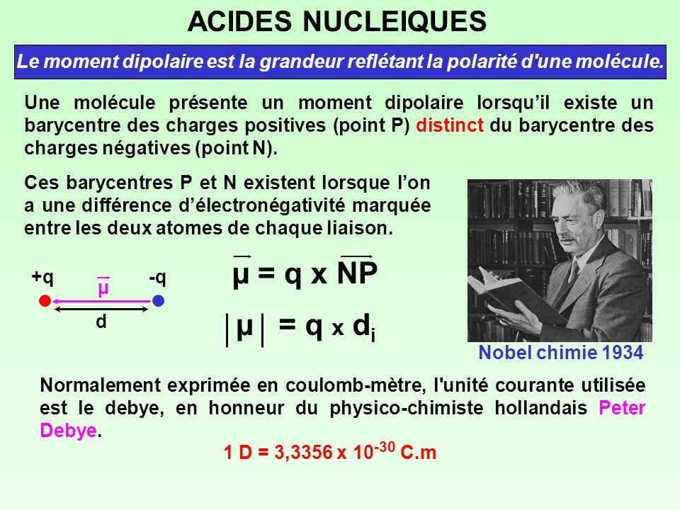 ACIDES NUCLEIQUES Le moment dipolaire est la grandeur reflétant la polarité d'une molécule. Une molécule présente un moment dipolaire lorsquil existe
