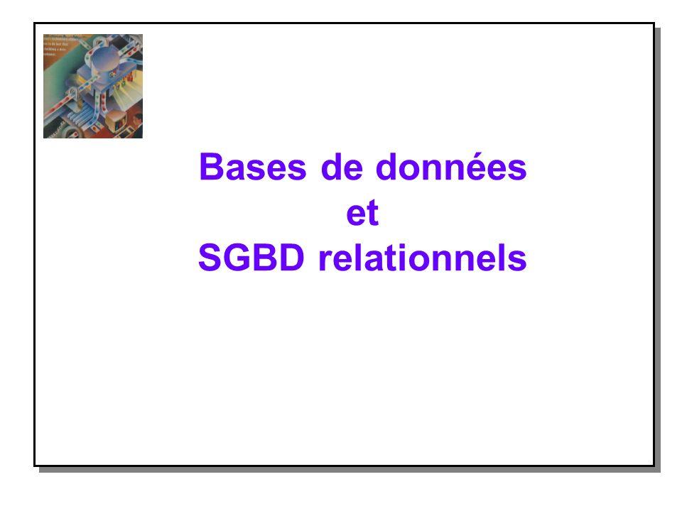 Exemple de base de données relationnelle (3) Les liens entre ces relations sont appelés des jointures : n lattribut NUMAV de VOL représente le même type dinformation que lattribut NUMAVION de AVION.