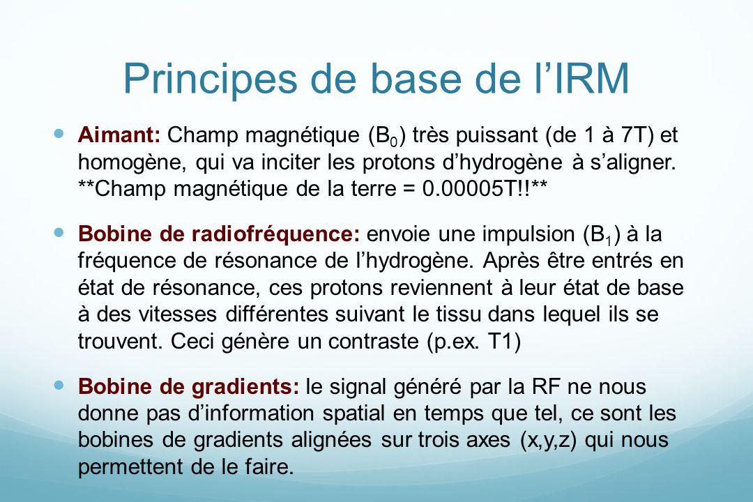 Principes de base de lIRM Aimant: Champ magnétique (B 0 ) très puissant (de 1 à 7T) et homogène, qui va inciter les protons dhydrogène à saligner. **C