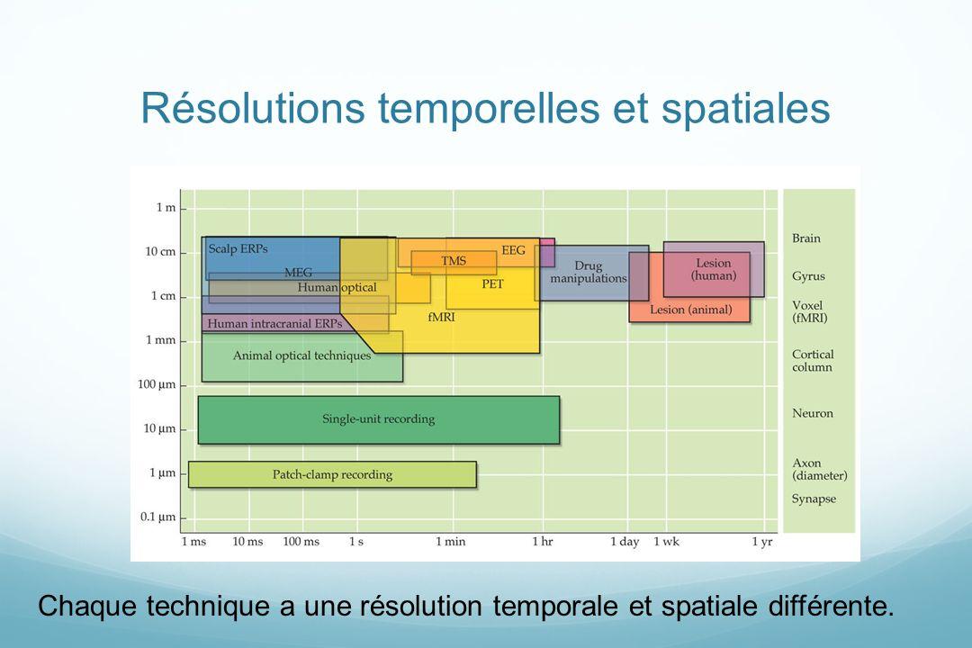 Résolutions temporelles et spatiales Chaque technique a une résolution temporale et spatiale différente.