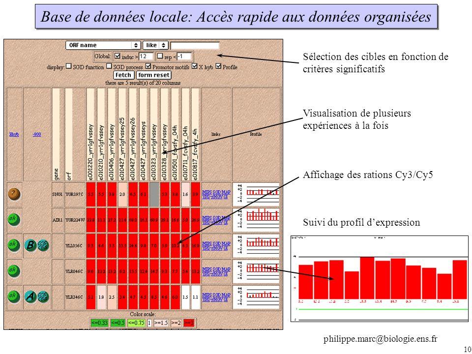 10 Base de données locale: Accès rapide aux données organisées Sélection des cibles en fonction de critères significatifs Visualisation de plusieurs expériences à la fois Affichage des rations Cy3/Cy5 Suivi du profil dexpression philippe.marc@biologie.ens.fr