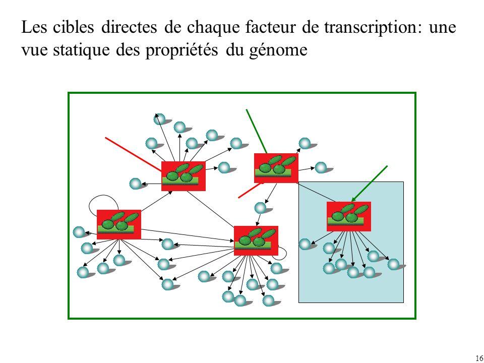 16 Les cibles directes de chaque facteur de transcription: une vue statique des propriétés du génome