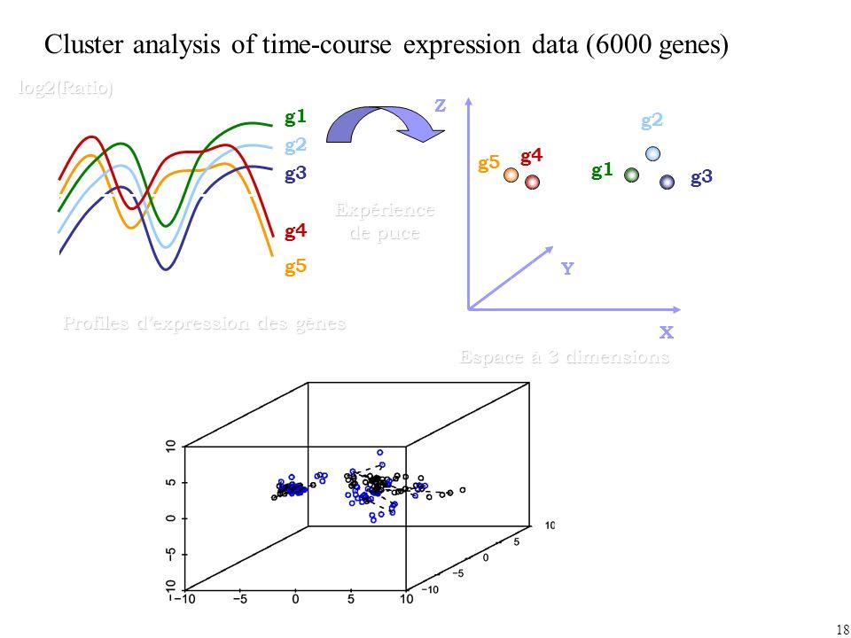 18 Expérience de puce Profiles dexpression des gènes g2 g3 g1 g5 g4log2(Ratio) X Y Z g2 g3 g1 g5 g4 Espace à 3 dimensions Cluster analysis of time-course expression data (6000 genes)