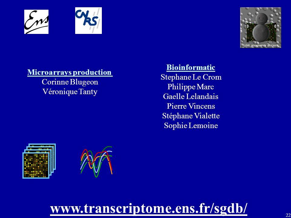 22 www.transcriptome.ens.fr/sgdb/ Microarrays production Corinne Blugeon Véronique Tanty Bioinformatic Stephane Le Crom Philippe Marc Gaelle Lelandais Pierre Vincens Stéphane Vialette Sophie Lemoine