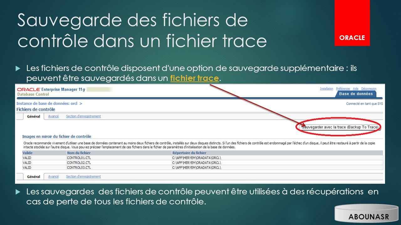 Sauvegarde des fichiers de contrôle dans un fichier trace Les fichiers de contrôle disposent d'une option de sauvegarde supplémentaire : ils peuvent ê