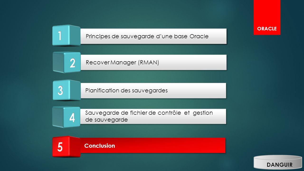 Planification des sauvegardes Sauvegarde de fichier de contrôle et gestion de sauvegarde Principes de sauvegarde dune base Oracle Recover Manager (RMA