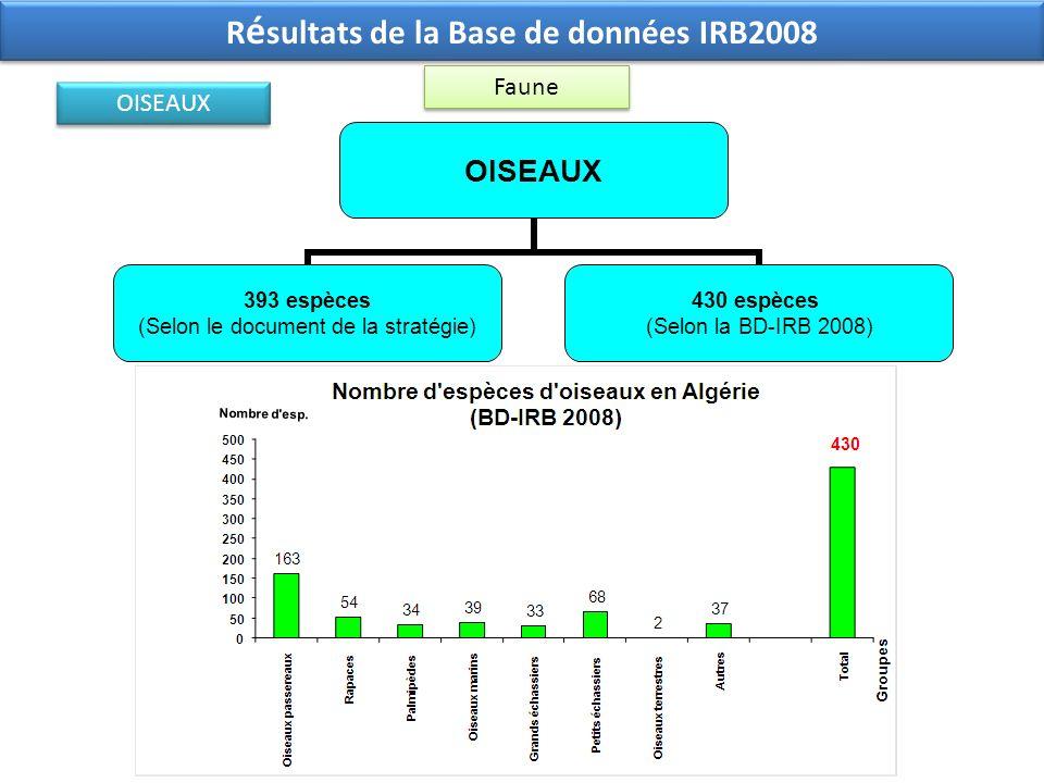 OISEAUX 393 espèces (Selon le document de la stratégie) 430 espèces (Selon la BD-IRB 2008) Faune R é sultats de la Base de données IRB2008 OISEAUX