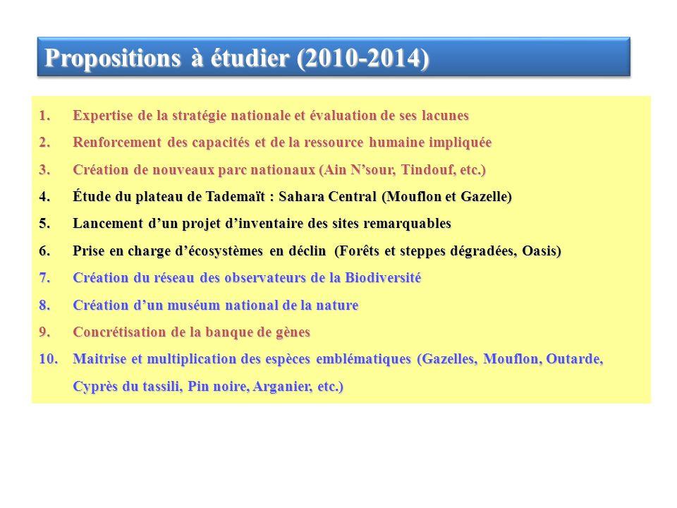 Propositions à étudier (2010-2014) 1.Expertise de la stratégie nationale et évaluation de ses lacunes 2.Renforcement des capacités et de la ressource