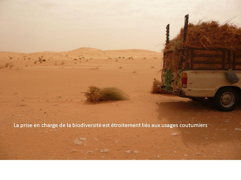 La prise en charge de la biodiversité est étroitement liés aux usages coutumiers