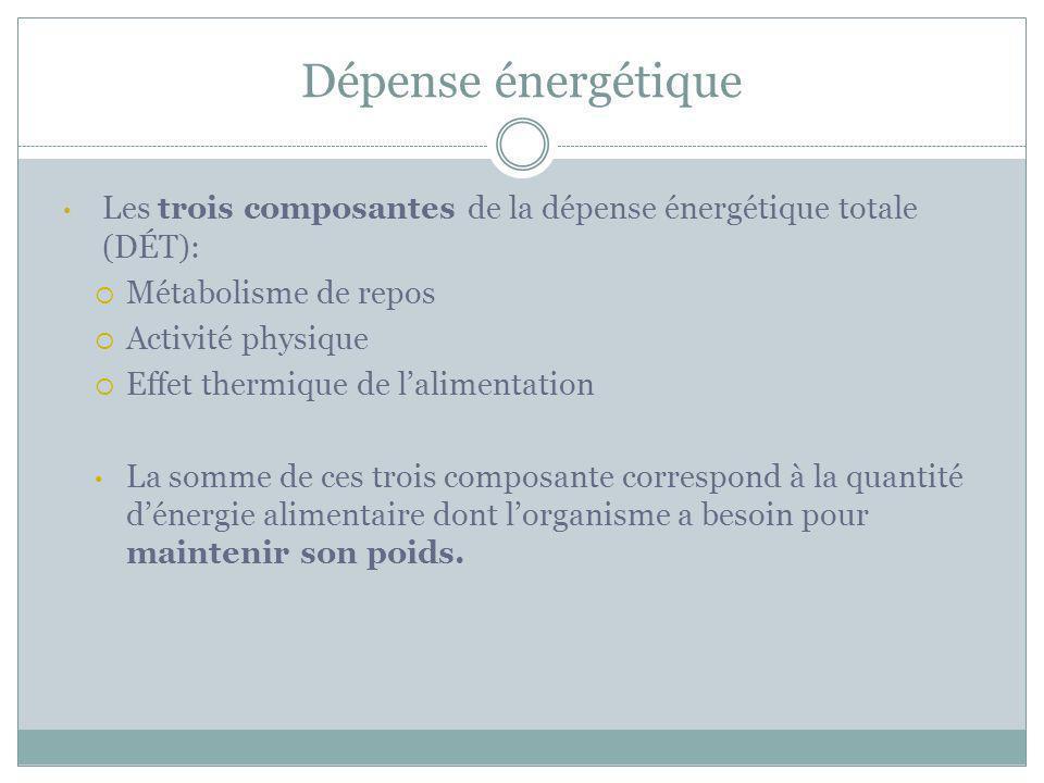 Les trois composantes de la dépense énergétique totale (DÉT): Métabolisme de repos Activité physique Effet thermique de lalimentation La somme de ces
