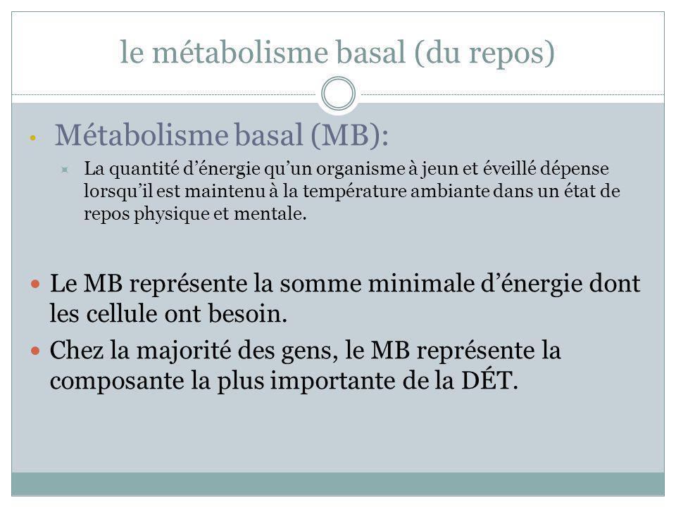 le métabolisme basal (du repos) Métabolisme basal (MB): La quantité dénergie quun organisme à jeun et éveillé dépense lorsquil est maintenu à la tempé